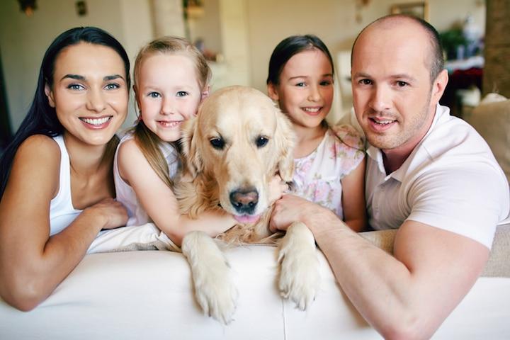 Ein Hund fuer die Familie | © panthermedia.net /Dmitriy Shironosov