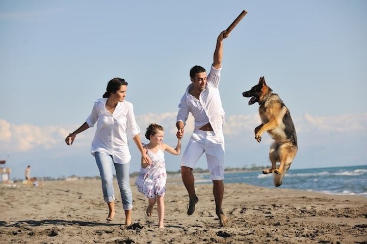 Familie mit Hund | © panthermedia.net /dotshock