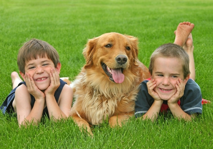 Kinder mit Hund | © panthermedia.net /sonya etchison